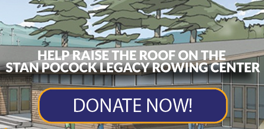 Raise The Roof - Donate Now Button