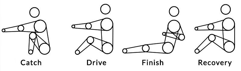 Rowing Stroke Components