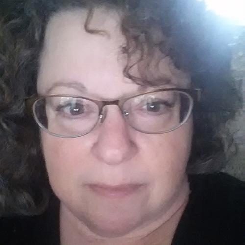 Anne Pomerantz - BIR Parent Leadership - Lost and Found